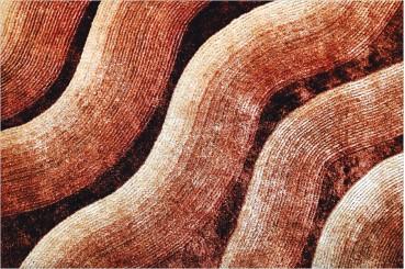 Carpet 30-165